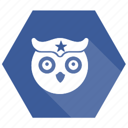 birds, education, knowledge, owl, university icon