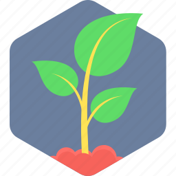 ecology, green, leaf, nature, plant icon