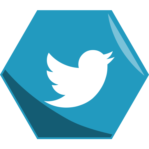 hexagon, media, networking, social, twitter icon