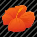 ocean, hibiscus, tropical, flower