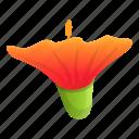 aloha, hibiscus, plant, nature