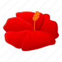 mallow, hibiscus, flower, tropical