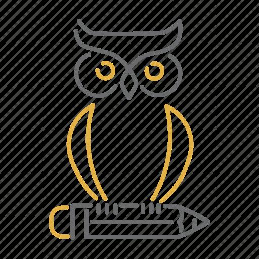 education, knowledge, learn, owl, pencil, school icon
