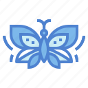 animals, butterfly, insect, nymph icon