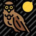 animal, hokkaido, night, owl, wild icon