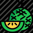 food, fruit, hokkaido, melon icon