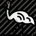 animal, bird, crane, hokkaido, kushiro icon