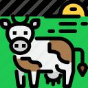 animal, cow, farm, hokkaido