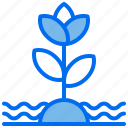 ecology, flower, grow, plant, water