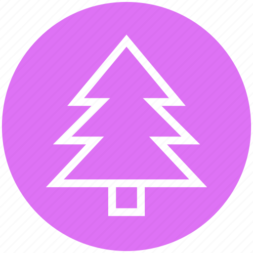 Christmas, christmas tree, fir, holiday, nature, tree, winter icon - Download on Iconfinder
