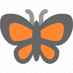butterfly, fly, inscets icon