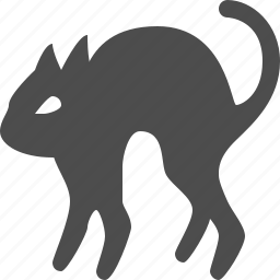 cat, celebration, halloween icon