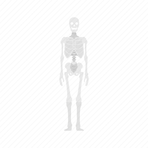 bones, dead person, halloween, skeleton icon