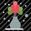 flower, home, living, plant