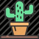 desk, cactus, succulent, plant, workspace, decoration