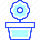 appliances, flower, home, homeware, house icon