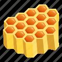 hexagon, hexagonal, honey, honeycomb, part