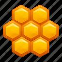 food, nature, yellow, honey, comb, hive
