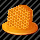 bee, honey, honeycomb, insect, nature, orange