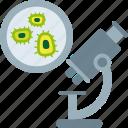analysis, cells, microscope, microscopic, virus