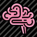 brain, cerebellum, doctor, health, hospital, neurology icon