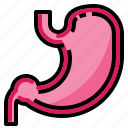 ache, body, health, medical, pain, stomach icon