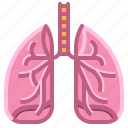 breath, health, hospital, lungs, organ, surgery icon