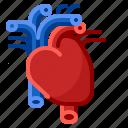 cardiology, care, doctor, heart, hospital, medical, medicine icon