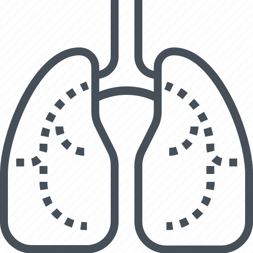 body, heart, lung, lungs, organ icon