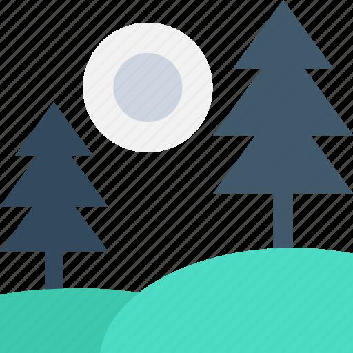 fir tree, forest, park, sun, trees icon