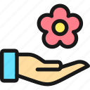 spa, hand, flower