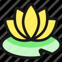 spa, lotus