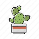 cactus, house, interior, nature, plant, pot, succulent icon