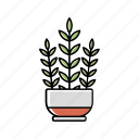 house, interior, leaves, nature, plant, pot icon