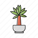 house, interior, leaves, nature, plant, pot, tree icon