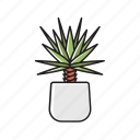 house, interior, leaves, nature, plant, pot, succulent icon