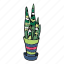 grow, hobby, house, plant, sanseurera, stripe, succulent icon