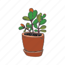 clay, green, grow, hobby, plant, pot, succulent icon