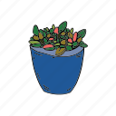 hobby, house, nature, plant, succulent icon