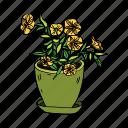 flower, hobby, house, nasturtium, plant, pot, yellow icon