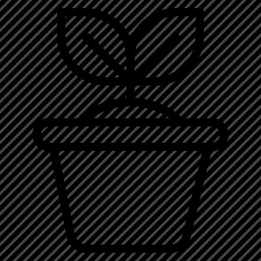 household, interior, plant, pot icon