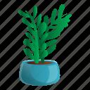 floral, flower, flowerpot, house, nature, tree