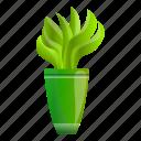 aloe, floral, flower, hand, plant, pot
