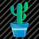 cactus, floral, flower, pot, tribal