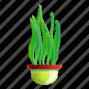 pot, long, leaf, floral, plant, flower