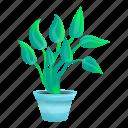 botanical, floral, flower, plant, pot, tree