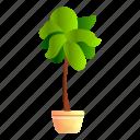 floral, flower, food, house, houseplant, tree