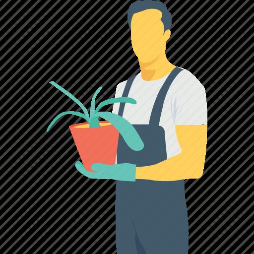 agriculturist, agronomist, flowering plant, gardener, plant icon