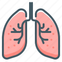 lungs, organ