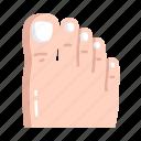 feet, foot, toe icon